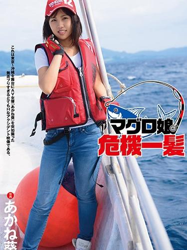 The Dead Fish Crisis, Aoi Akane